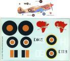 SAAF 5 Sqaudron Kittyhawk WWII 1/32 Scale